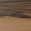 Янтарна деревина